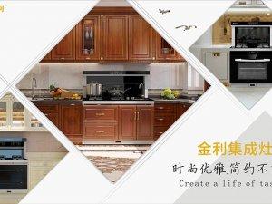 金利集成环保灶图片 集成灶厨房装修效果图